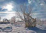 Laokoon in der Wintersonne