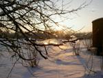 Winterkostbarkeiten