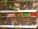 Eines unserer Bienenhotels