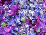 Blütenhimmlisch